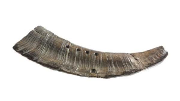 cow-goat-horn-vasterby-sweden-viking-instrument
