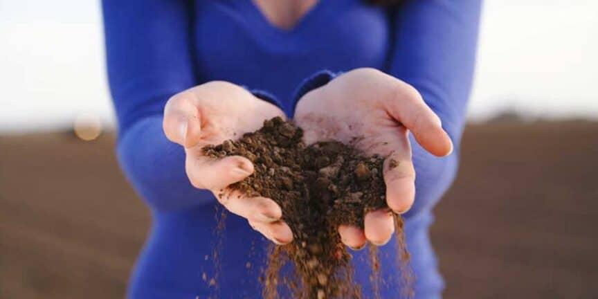 viking-age-denmark-soil