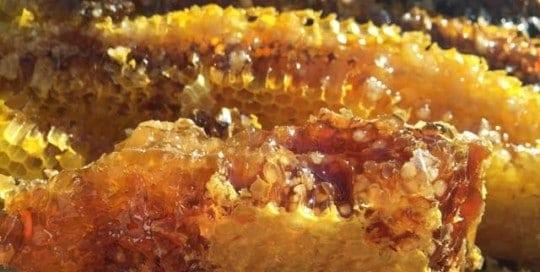 viking-mead-alcoholic-beverage-honey-vikingage-beekeeping