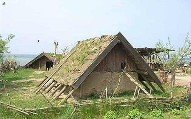 viking-poultry-house