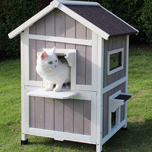outdoor-cat-shelter